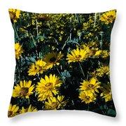 Brillant Flowers Full Of Sunshine. Throw Pillow