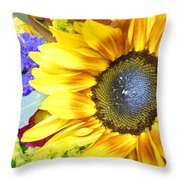 Brillante Throw Pillow