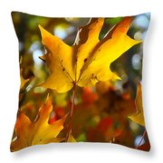 Brilliant Autumn Light And Color Throw Pillow