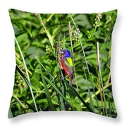 Brilliant Bunting Throw Pillow