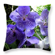 Brilliant Checkerboard Purple Orchid Throw Pillow