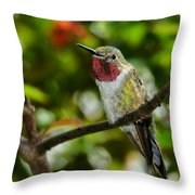 Brilliant Color Of The Ruby-throated Hummingbird Throw Pillow