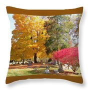Brilliant Colors In The Cemetery  Throw Pillow