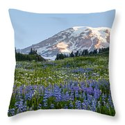 Brilliant Meadow Throw Pillow by Mike Reid