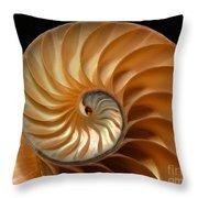 Brilliant Nautilus Throw Pillow