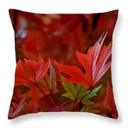 Brilliant Red Maples Throw Pillow by Linda Unger