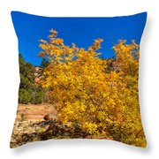Brilliant Zion Colors Throw Pillow