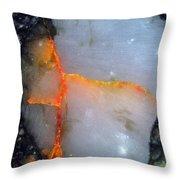 Nwa 5142 Throw Pillow