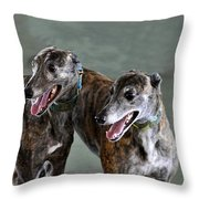 Brindle Greyhound Dogs Usa Throw Pillow