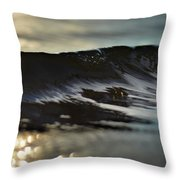 Bring It On Home Throw Pillow