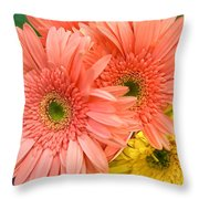 Bringing A Smile Throw Pillow