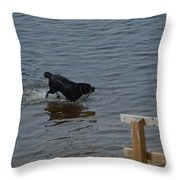 Bringing It In Throw Pillow