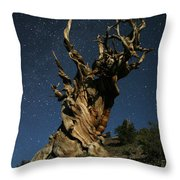 Bristlecone By Moonlight Throw Pillow