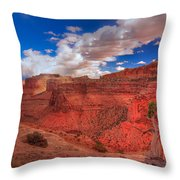 Bristlecone Guardian Throw Pillow
