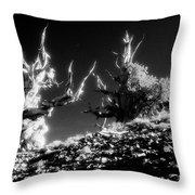 Bristlecone Twins In Infrared Throw Pillow
