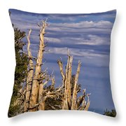 Bristlecone Warriors Throw Pillow