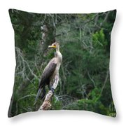 Bristol Cormorant Throw Pillow