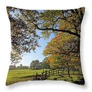 British Autumn Throw Pillow