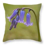 British Bluebell Hyacinthoides Non Scripta. Throw Pillow
