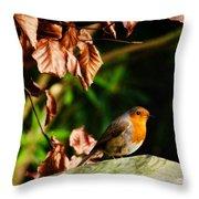 British Nature Throw Pillow