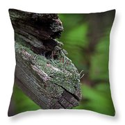 British Soldiers On The Trail Throw Pillow