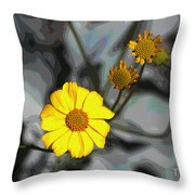 Brittle Bush Flowers In December Throw Pillow