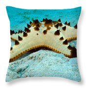 Brittle Star Fish Throw Pillow
