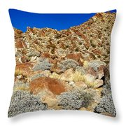 Brittlebush Leaves And Santa Rosa Mountains From Borrego Palm Canyon In Anza-borrego Desert Sp-ca Throw Pillow