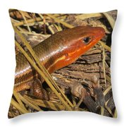 Broad-headed Skink II Throw Pillow