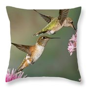 Broad Tails Throw Pillow