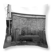 Broken Donkey Throw Pillow