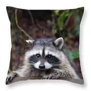Broken Ear But Still Cute Throw Pillow