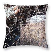 Broken Home Broken Dreams  Throw Pillow