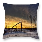 Broken Sustainable Forest Management Throw Pillow