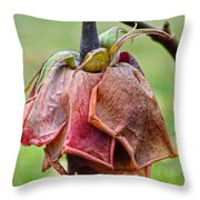 Broken Today Throw Pillow