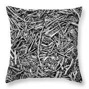 Broken Twigs Throw Pillow