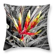 Bromeliad 1 Throw Pillow