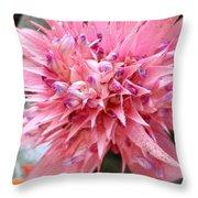 Bromeliad Close Up Pink Throw Pillow