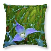 Bromeliad Pond Throw Pillow