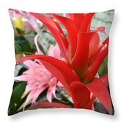 Bromeliad Red Pink Brick Throw Pillow