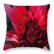Bromeliad Splendor Throw Pillow