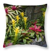 Bromeliads Throw Pillow