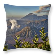 Bromo Tengger Semeru National Park Throw Pillow