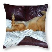 Bronson And His Ball Throw Pillow