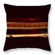 Bronzed Grill Throw Pillow