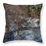 Brook And Bare Trees - Winter - Steel Engraving Throw Pillow