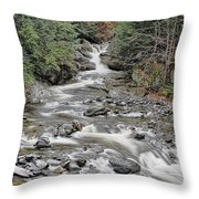 Brook In October Throw Pillow