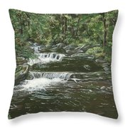 Brook In Spruceton Throw Pillow