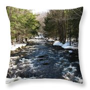 Brook In The Spring Throw Pillow