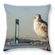 Brooklyn Seagull Throw Pillow